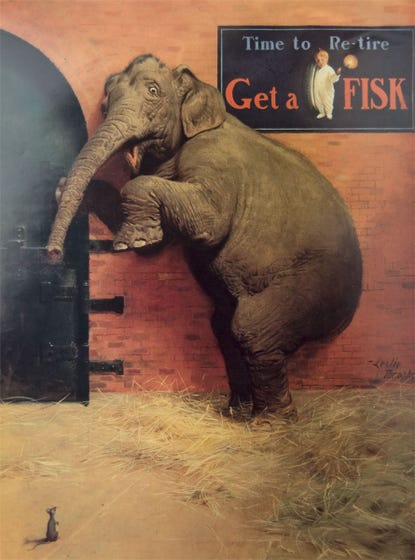 Fisk Poster | Elephant